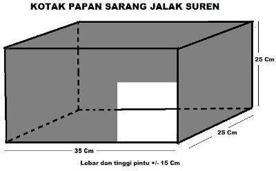 kotak-sarang-js1