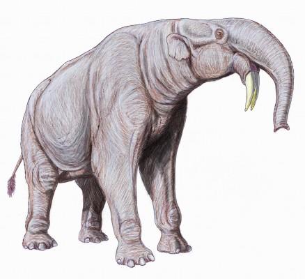 Deinotherium, gajah bergading cangkul