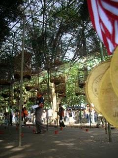 Lomba Burung (Foto: arsip 3.bp.blogspot.com)
