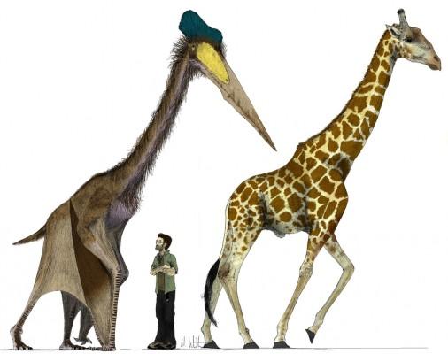 Quetzalcoatlus, makhluk terbesar yang pernah ada