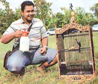 Heru Mulya dan Burung Cendet Bombastik