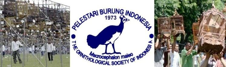 Visi dan misi Pelestari Burung Indonesia - PBI