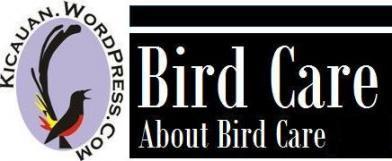 Perawatan burung