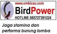 BirdPower - Jaga stamina dan performa burung lomba