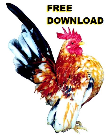 Download free 106 artikel peluang usaha, agrobisnis, tips sehat dan ragam hobi flora-fauna