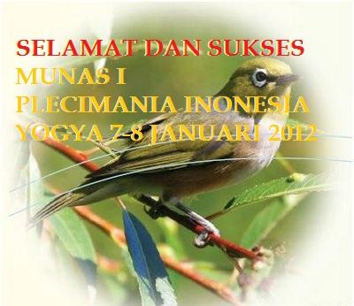 Selamat dan Sukses Munas I Plecimania Indonesia