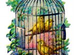 Wallpaper, gambar, foto, lukisan burung kenari (picture, painting and photo canary) (16)