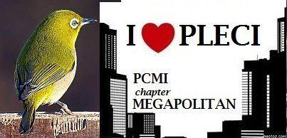 PCMI Megapolitan Logo