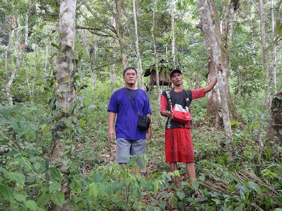Di tengah hutan areal perbukitan menuju lokasi murai batu berada