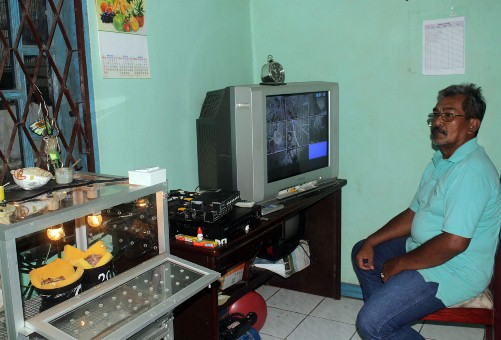 Memantau perkembangan anakan dari ruang monitor