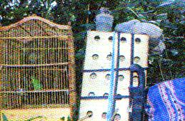 Peralatan jaring burung di Kalimantan