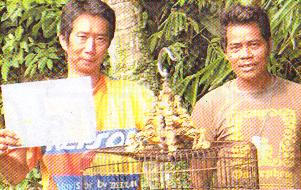 Bambang Robert dan Sani Jepang