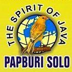 Logo Papburi Solo
