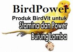 BirdPower - produk BirdVit untuk burung lomba