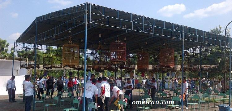 Kelas burung murai batu Prabowo Subianto Cup Semarang