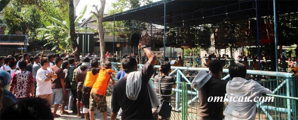 Suasana Lomba Burung Sambego Cup 10 Juni 2012