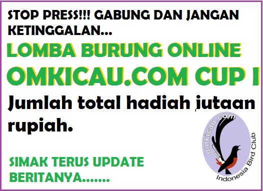 Lomba burung online omkicau.com cup I