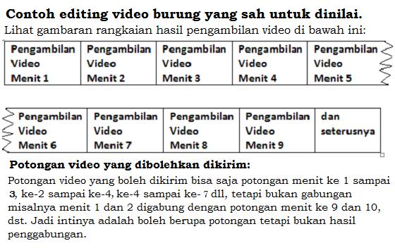 Potongan video yang boleh dikirimkan
