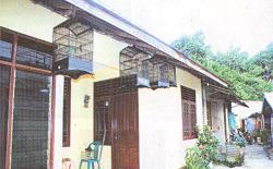 Rumah ditinggal penghuni rawan disatroni pencuri burung