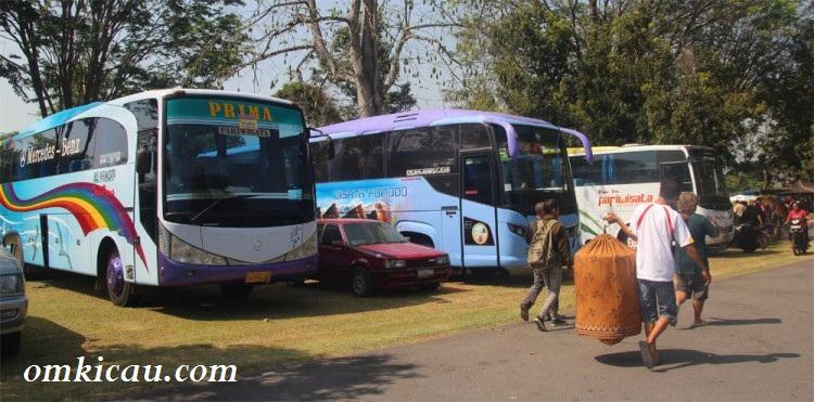 Sebagian rombongan menyewa bus besar