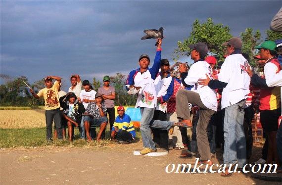Suasana lomba GALATAMA Merpati – Sabtu 14 Juli 2012