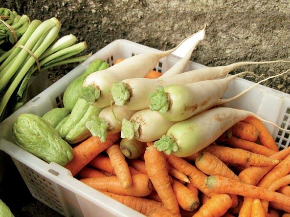 Lobak dapat dinikmati dengan cara dibuat menjadi salad bersama dengan wortel