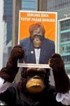 Aktivis Center for Orangutan Protection unjukrasa minta Pasar Burung Pramuka dan Jatinegara ditutup (2)