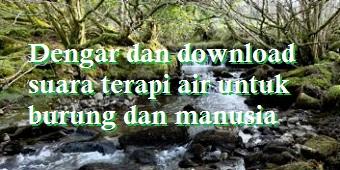 Dengar dan download suara terapi air untuk burung dan manusia