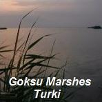 Suasana Goksu Marshes Turki