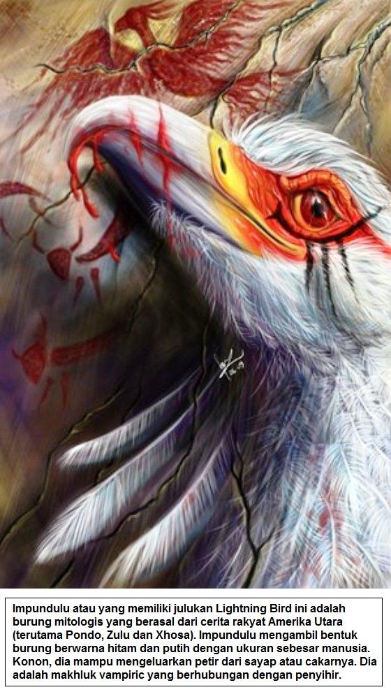Impundulu atau yang memiliki julukan Lightning Bird ini adalah burung mitologis yang berasal dari cerita rakyat Amerika Utara terutama Pondo, Zulu dan Xhosa