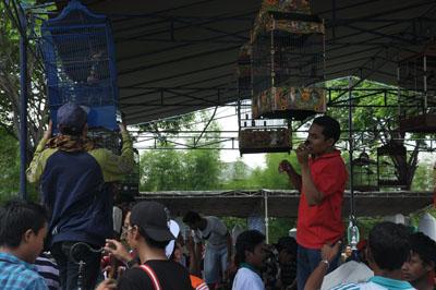 Pak De Karwo Cup 2011
