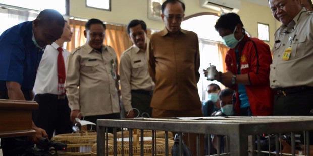 Salah satu operasi penyitaan hewan dilindungi oleh BKSDA DKI Jakarta