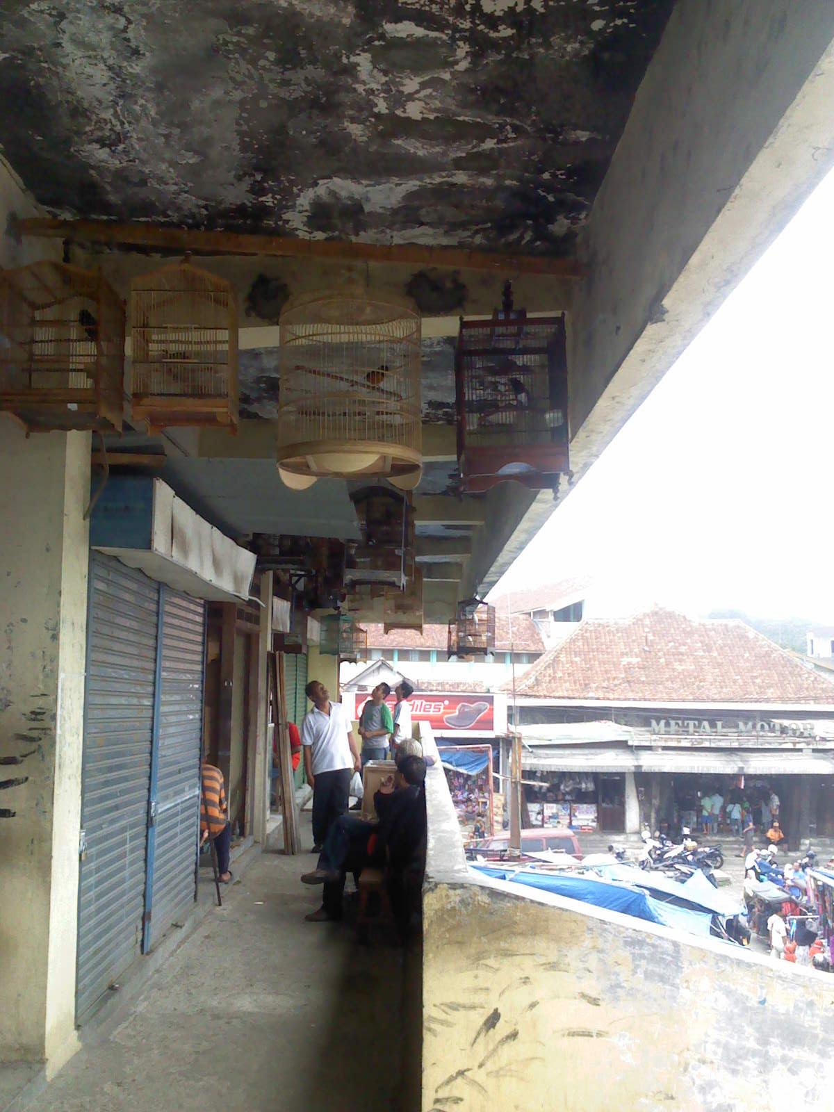 Kios Burung di Pasar Kebon Kembang