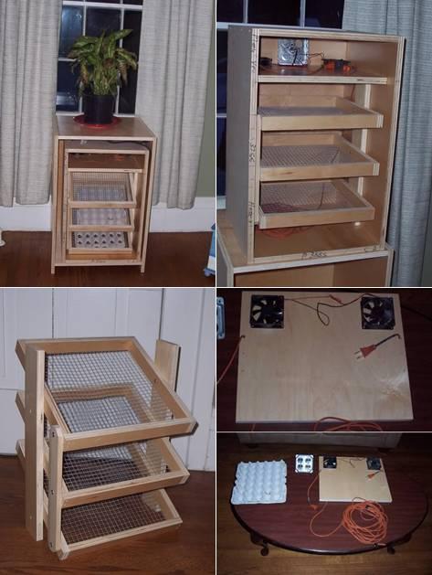Inkubator dari kotak triplek