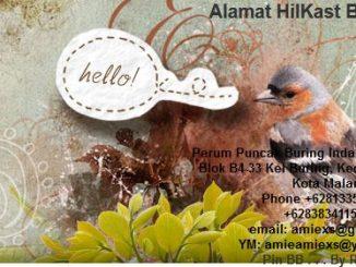 Amiexs Bird Farm