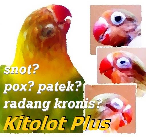 Kitolot Plus atasi problem mata burung