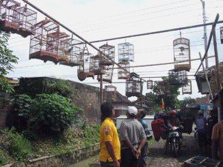 pasar-burung-kepuh