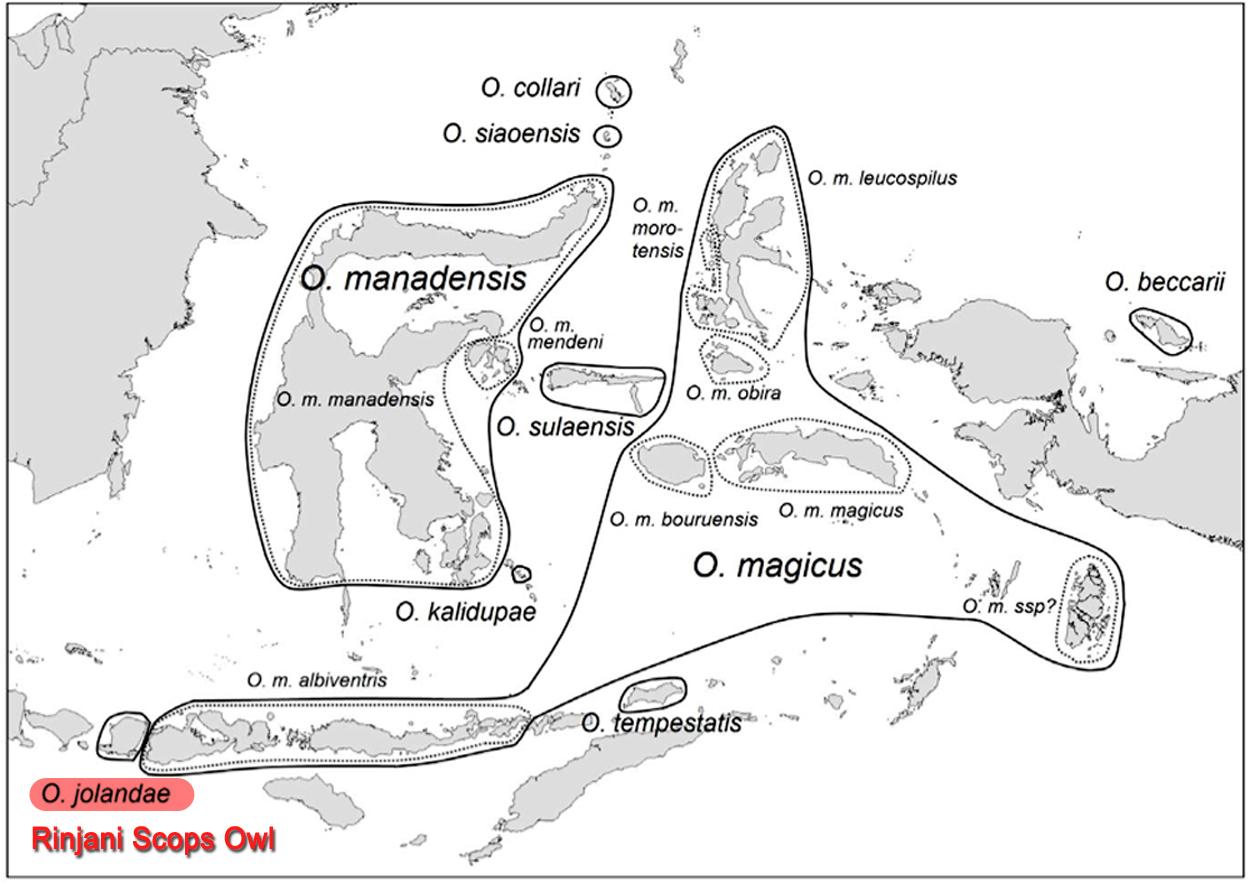 Peta sebaran burung hantu di kawasan garis Wallacea.