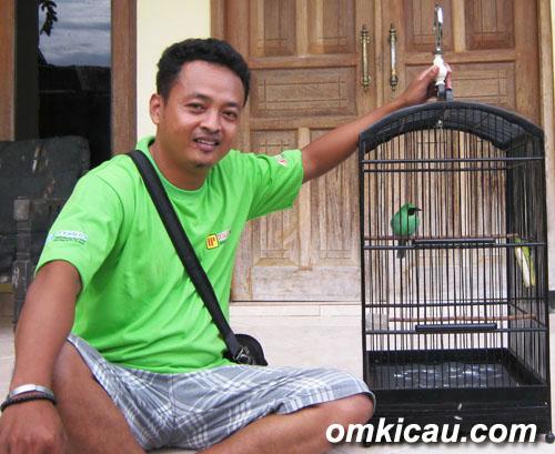 Tommy mengawal cucak hijau Van Java milik Fahmi Kobelco.