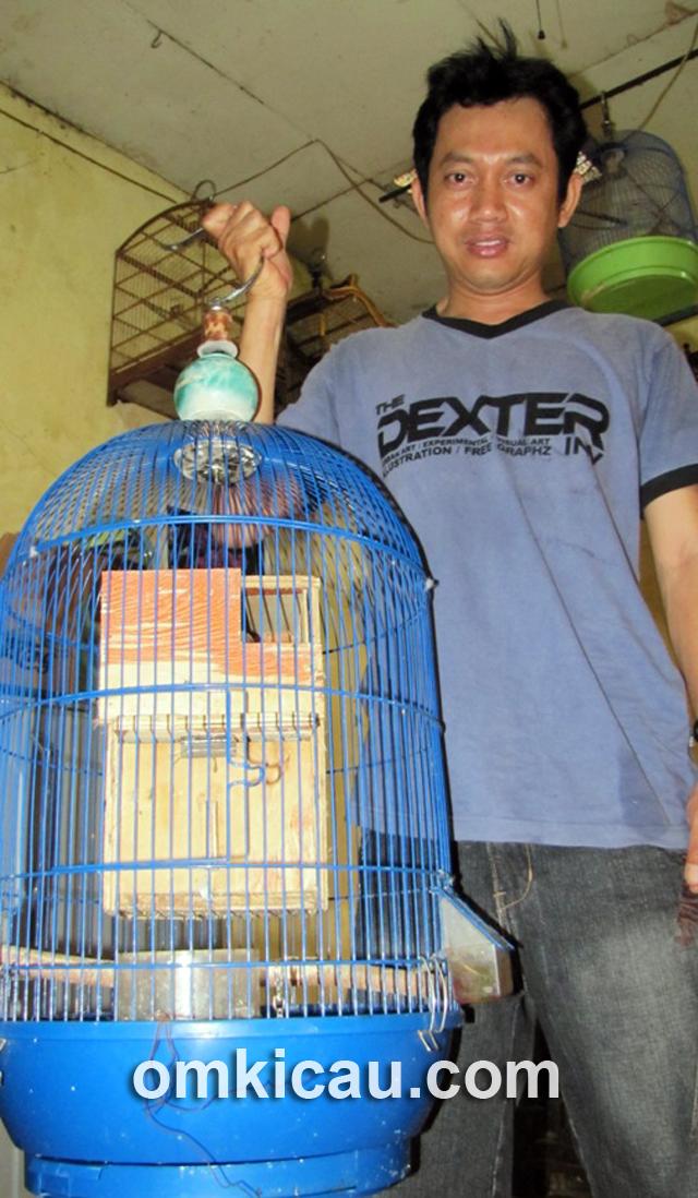 Iwan Fitriadi memindahkan sangkar gantung penangkaran lovebird.