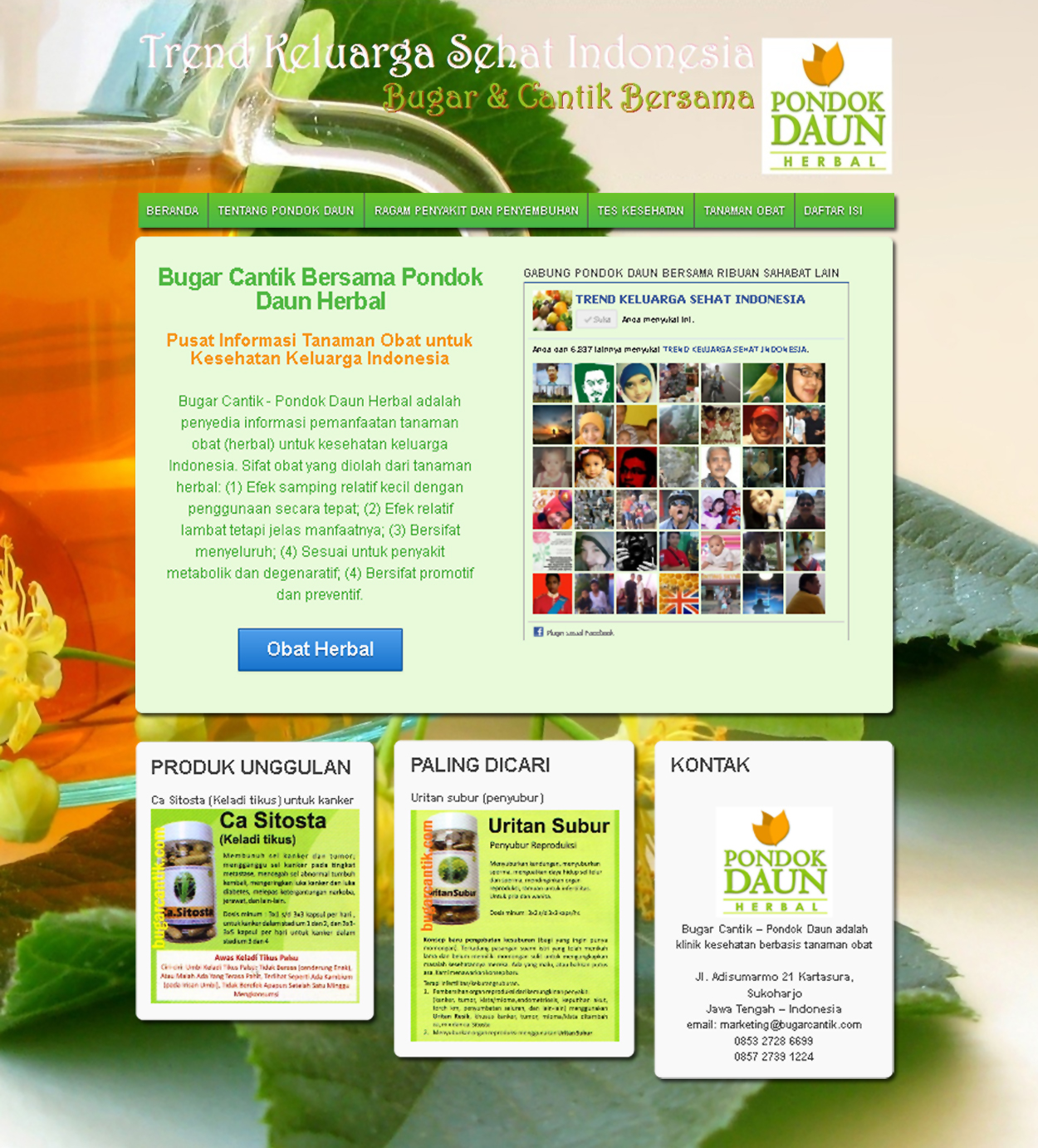 Website Produk Herbal Pondok Daun (bugarcantik.com)