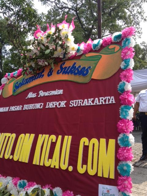 Hanya ini yang bisa diberikan Om Kicau,seraya berharap agar Pasar Burung Depok Solobisa menjadi pusat ekonomi, wisata, dan refreshing,bagi warga Solo Raya dan tamu dari luar kota.