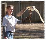 feat-latihan-owl