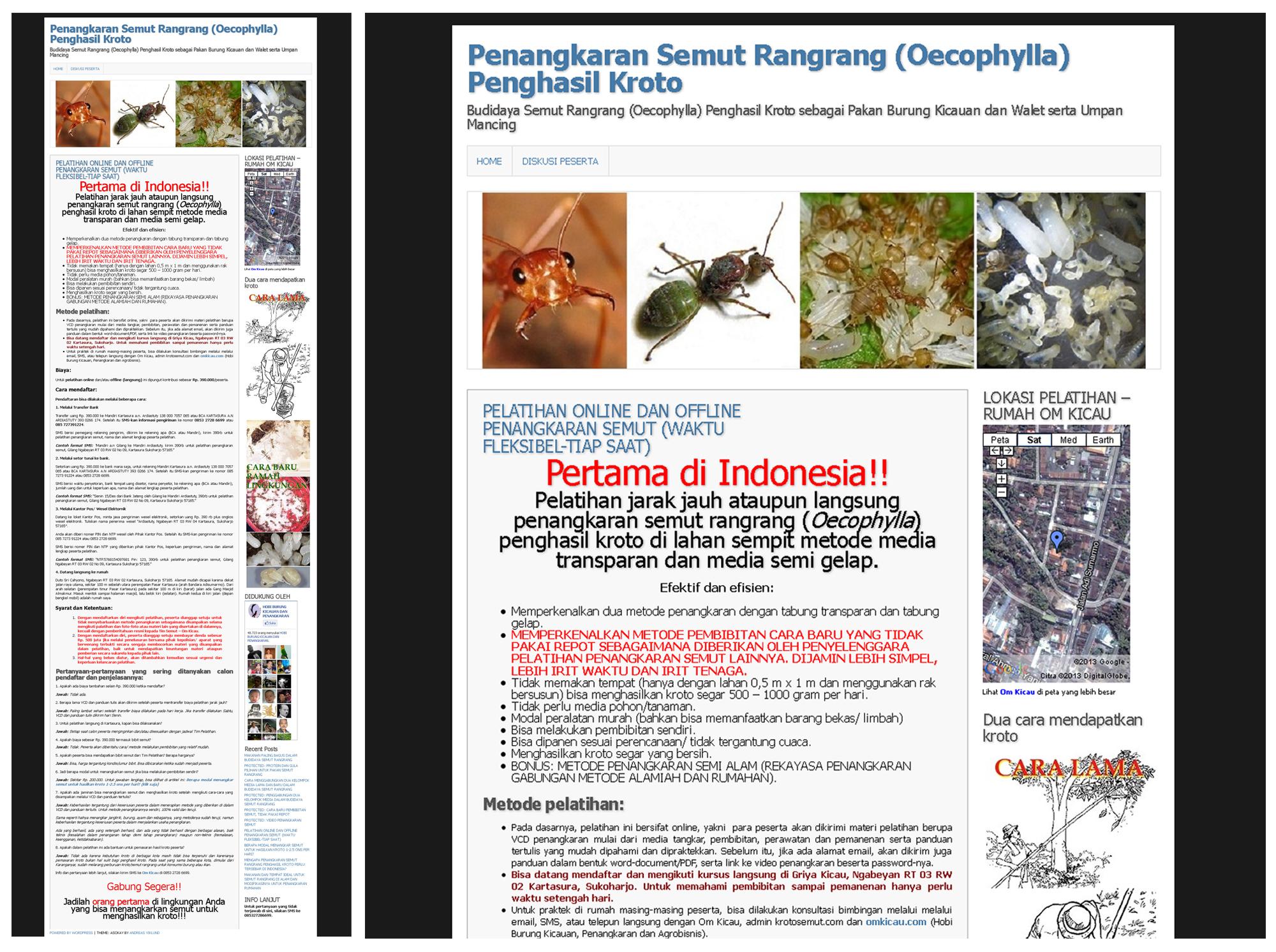 Website Kroto Semut (krotosemut.com)
