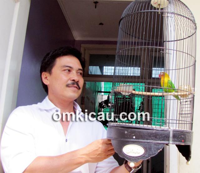Dokter Mulyana bercengkerama dengan lovebird Janda.