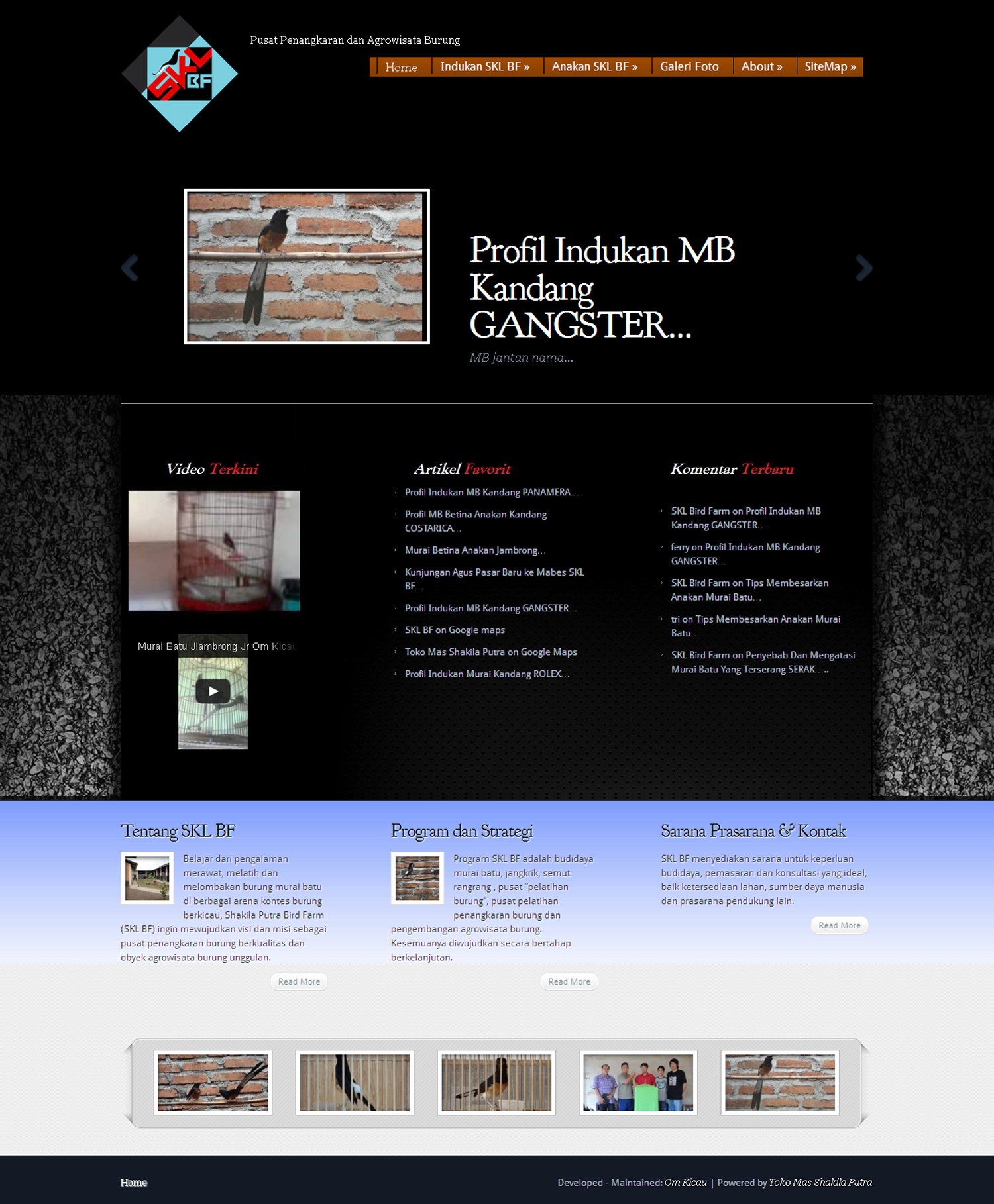 Website SKL Bird Farm