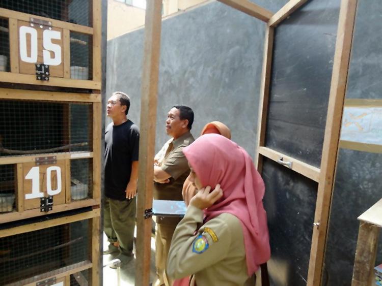 Pejabat Pemkab Indramayu meninjau kandang SKL Bird Farm.