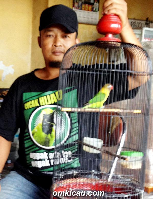 Tobil Proloman bersama Putri Ayu, lovebird hasil breeding sendiri.