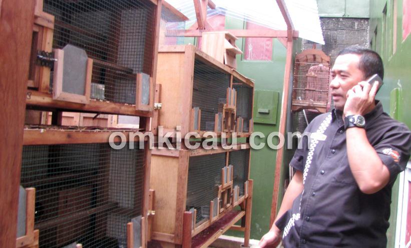 Om Kuwadi di depan kandang penangkaran lovebird.