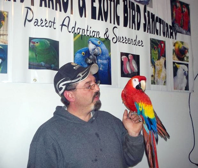 Pertemuan mengharukan Taylor dan macaw Love Love, Minggu (21/4).